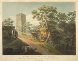 Castle of Old Court, County of Wicklow